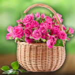 GiftMyEmotions: Signify Purity, Innocence & Love OFF on Roses & Flowers Orders