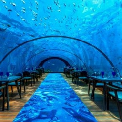 Upto 80% OFF on Maldive Islands Bookings