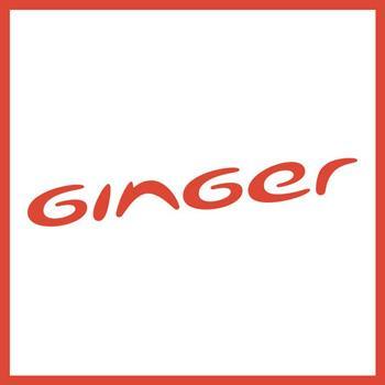 Ginger Hotels